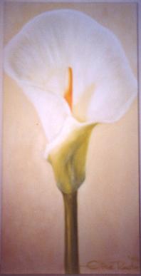 GalarieBlumenweisseLilie