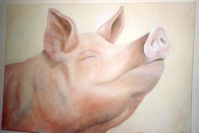 GalerieSchweinchen_neu